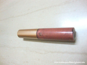 Eyetex Dazller Lip Gloss Shade 005 Review, Swatches and LOTD