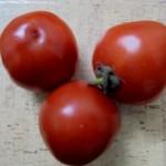 tomato exfoliator