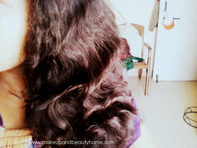 Dharu's Hair Story, Routine and Photos - Woes of a Curly ...