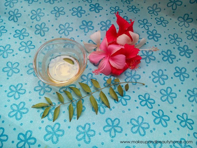 hibiscus-curd-curry-leaves-for-hair (3)