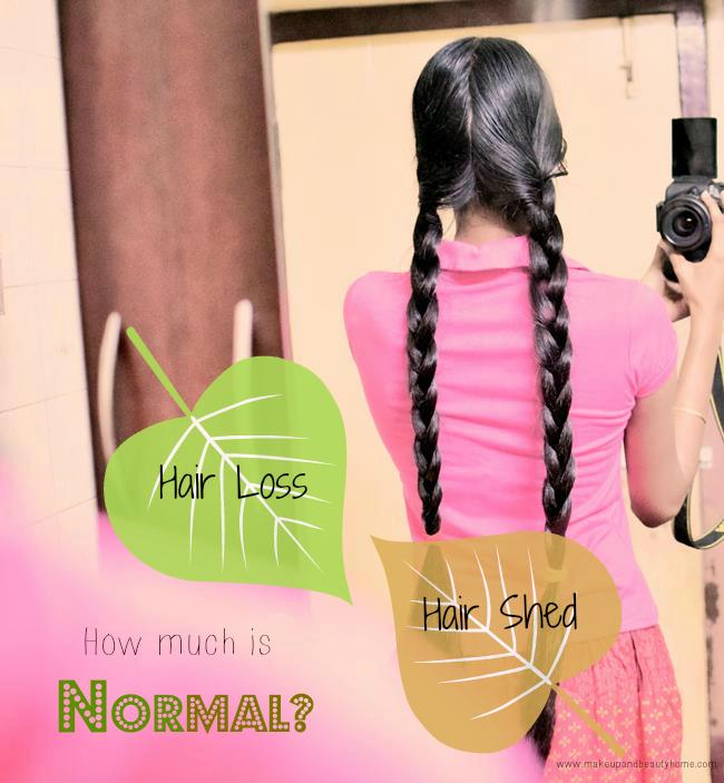hair loss vs hair shed