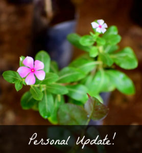 Getting Personal : Blog, Business & Life Update!