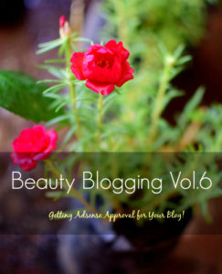 How to Get Adsense Approval for Your Blog? My Own Experience + Ideas : Beauty Blogging Vol.6
